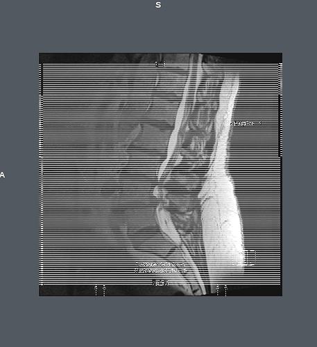 20190308-013656